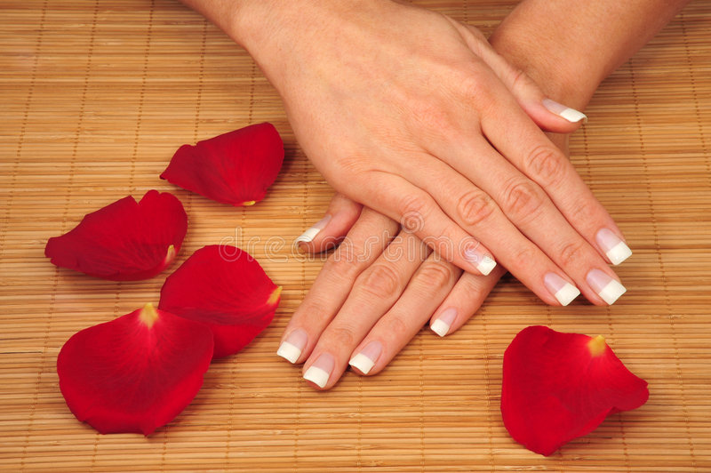 Download Manicure stock photo. Image of finger, roses, being, french - 4468654