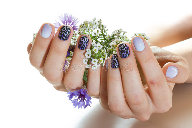 manicure royalty-vrije stock afbeelding
