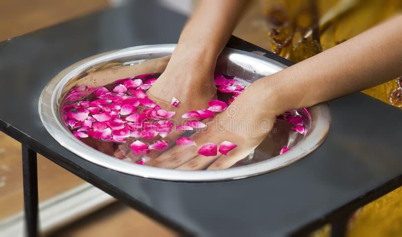 manicure zdjęcie royalty free