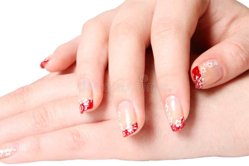manicure obrazy royalty free