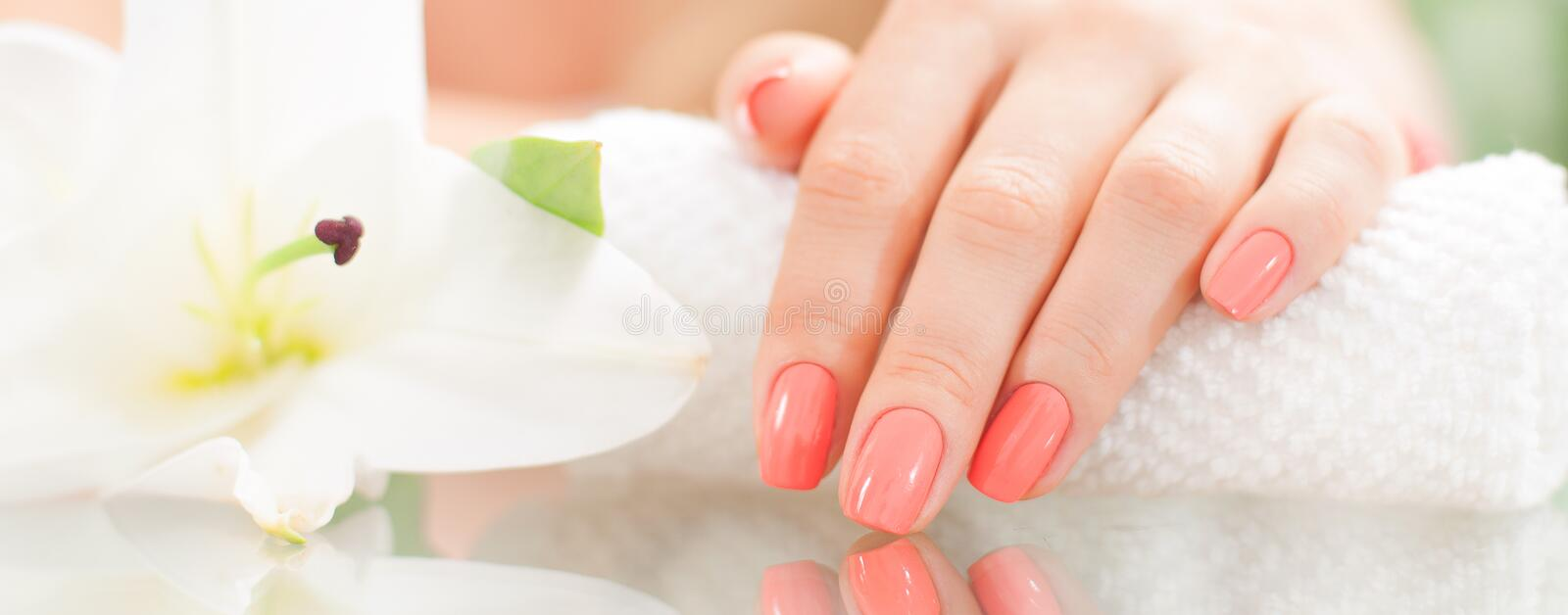 Manicure concept. Beautiful woman& x27;s hand with perfect manicure at beauty salon. stock image