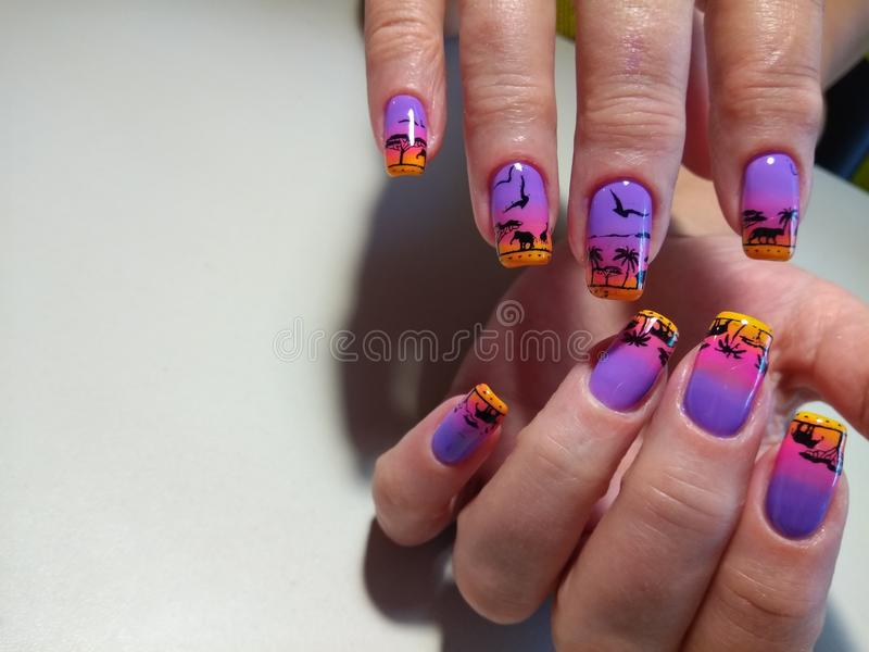 African Nails Fashion Stock Photos Download 376 Royalty
