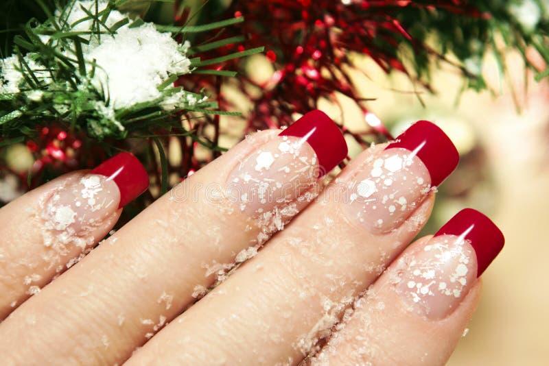 Manicure di inverno. fotografia stock
