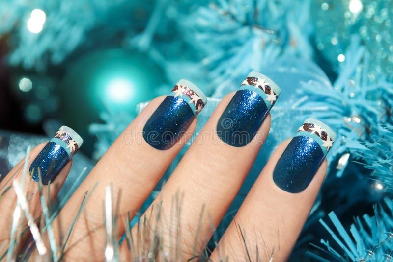 Manicure di inverno immagine stock