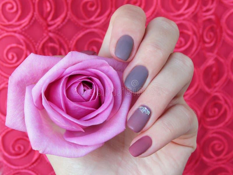 Manicure dusty rose stock image
