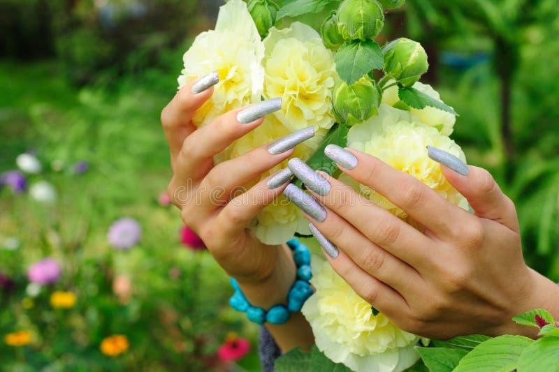 Manicure en clavos verdaderos y la flor amarilla del hollyhock fotos de archivo libres de regalías