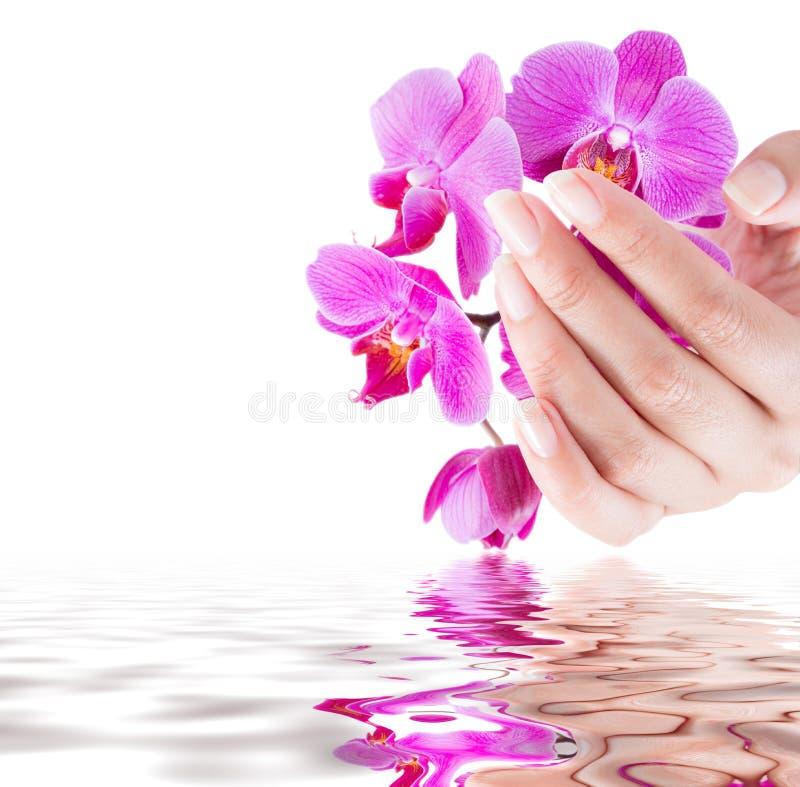 Manicure en schoonheidsachtergrond royalty-vrije stock afbeeldingen