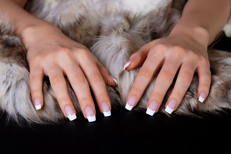 Manicure francês e peles imagens de stock royalty free