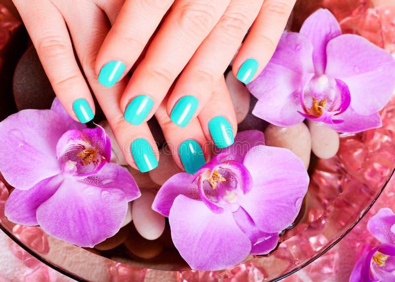 Manicure i pedicure obrazy stock