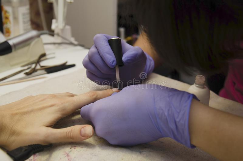 Manicure master covers the client`s nails with a special nail fixer. Manicure makes nail treatment with special tools in the beauty salon royalty free stock images
