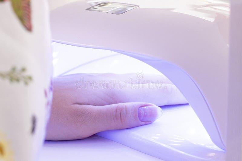 manicure mano in lampada UV essiccamento della vernice del gel nella lampada immagini stock