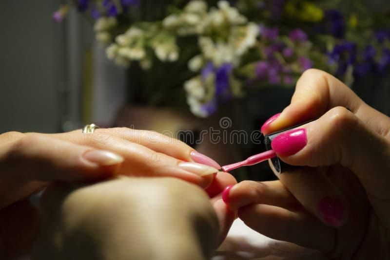 Manicure nail paint. Beautician applying nail polish to female n royalty free stock photo