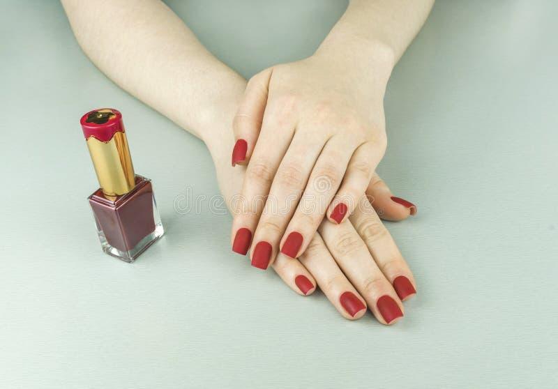 Manicure opaco rosso femminile alla moda alla moda, forma quadrata immagini stock