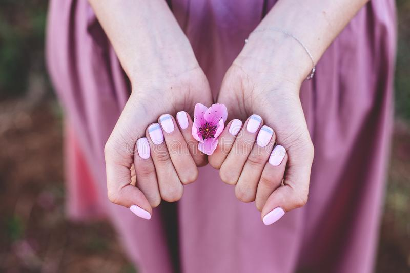 Manicure with peach flowers. royalty free stock photos