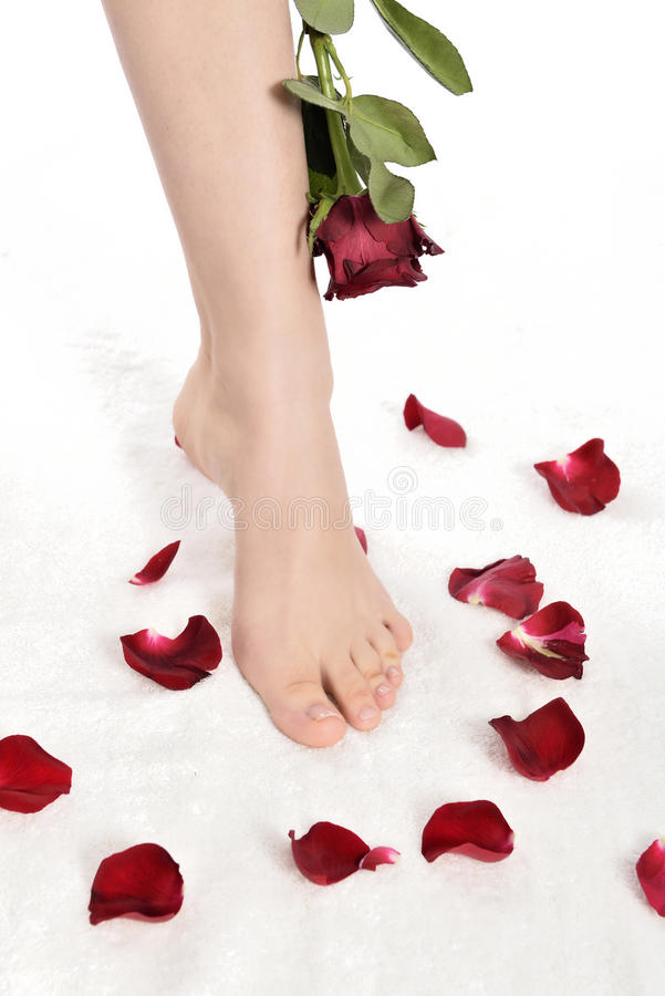 Download Manicure and pedicure stock image. Image of massage, flower - 37643445