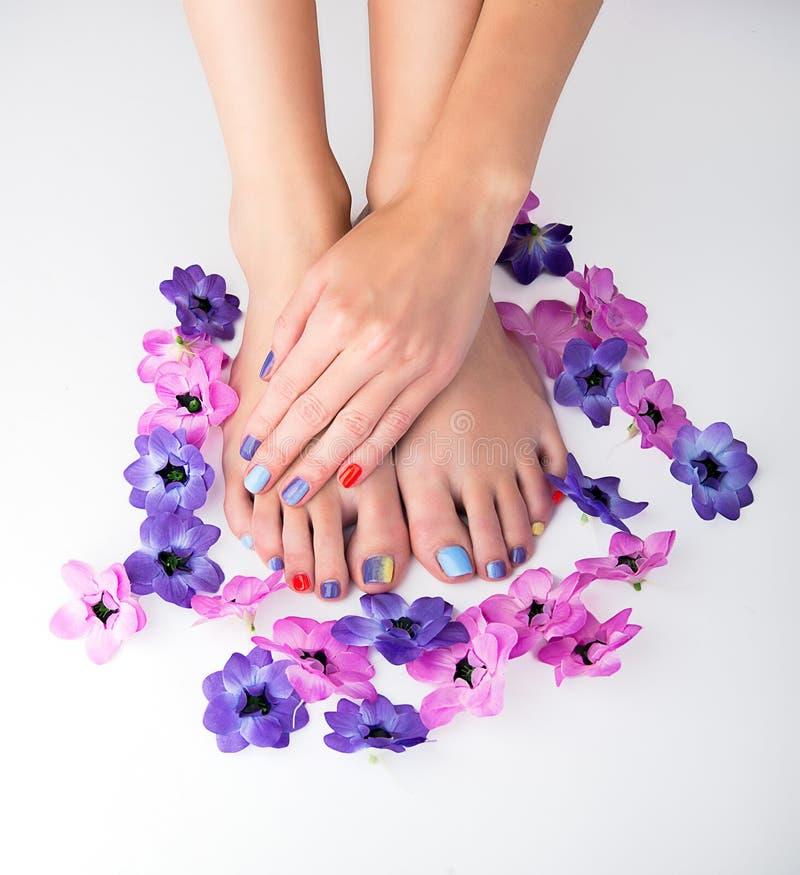 manicure pedicure стоковые изображения