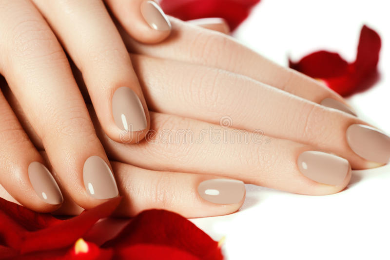 Manicure perfetto Mani della donna con i chiodi beige naturali manicured immagine stock