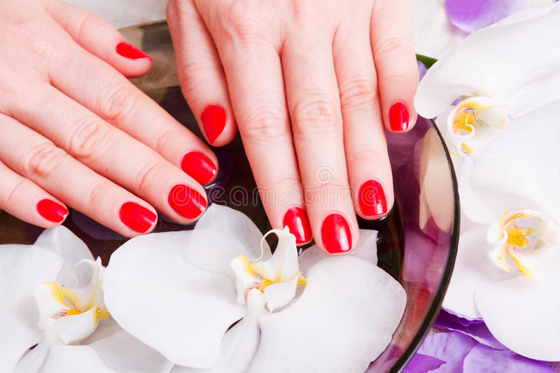 Download Manicure Red Royalty Free Stock Photos - Image: 26410808
