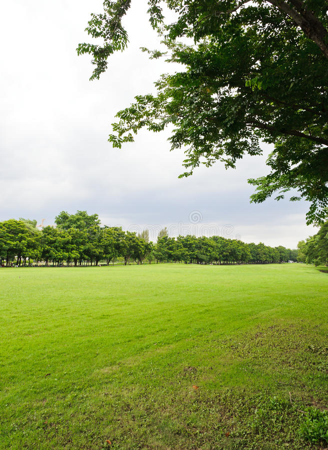 Download Manicured lawns stock image. Image of long, city, color - 24364065