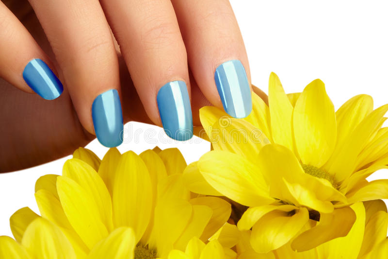 Manicured Nails With Natural Nail Polish. Manicure With Blue ...