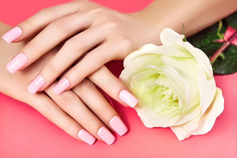 Manicured nails with pink nail polish. Manicure with nailpolish. Fashion art manicure, shiny gel lacquer. Nails salon stock photography