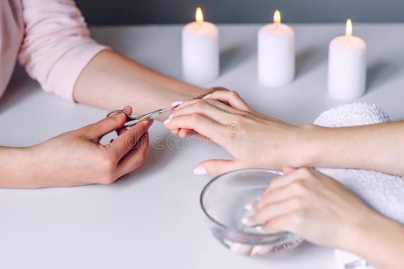 Manicurzysta wręcza używa metal dla tnącego oskórka od żeńskich klientów gwoździ kosmetyczni gwoździ nożyce Kobiety ręki dostawan zdjęcie royalty free