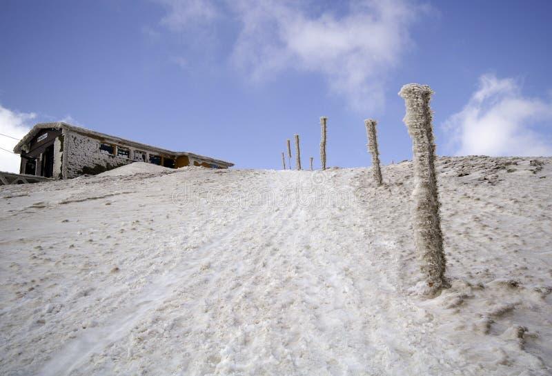 Manier aan berg Snezka stock afbeeldingen