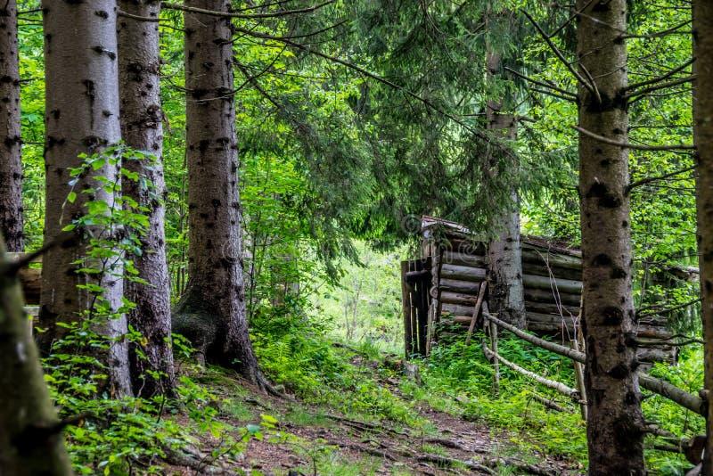 Manier aan de schuur in hout royalty-vrije stock foto