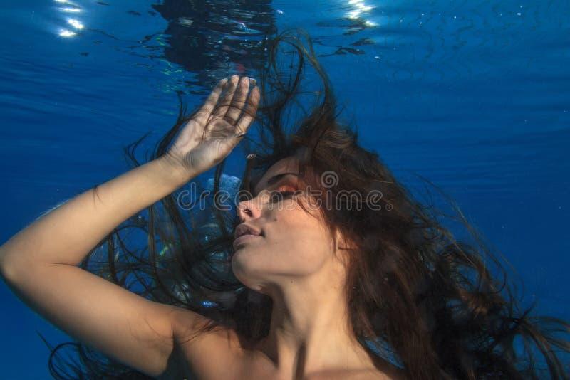 Manier donkerbruin model met lang haar onderwater op blauwe backgro stock afbeeldingen