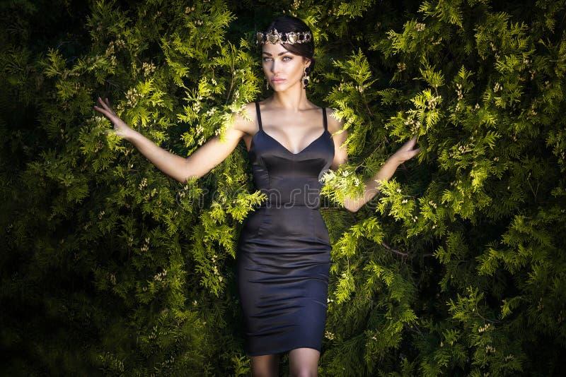 Manierfoto van donkerbruine elegante dame royalty-vrije stock afbeeldingen