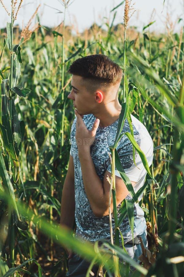 Manierportret van een jonge jongen in cornfield stock fotografie