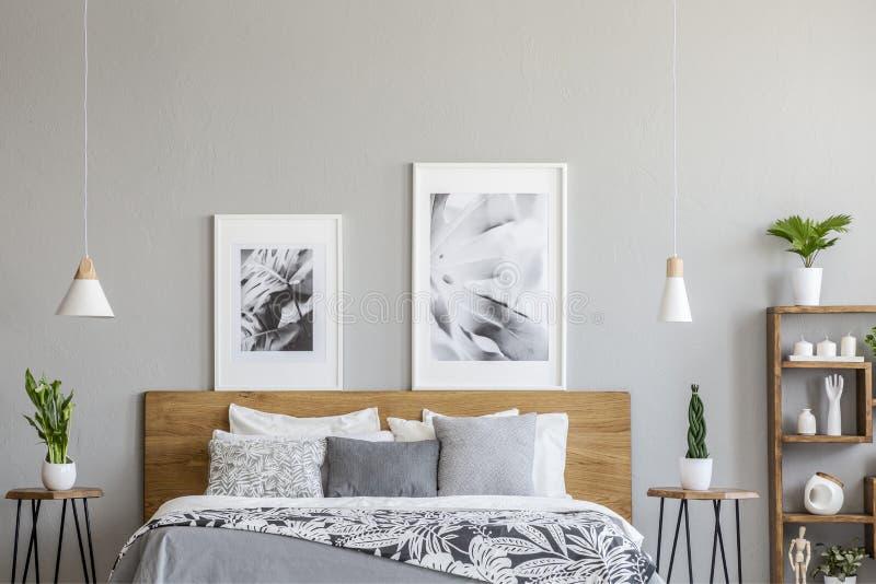Manifesti sopra il letto di legno fra le tavole con le piante nell'interno grigio della camera da letto con le lampade Foto reale immagine stock