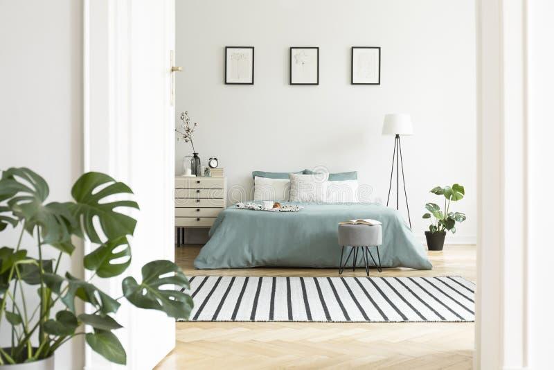 Manifesti sopra il letto verde nell'interno bianco della camera da letto con le piante fotografia stock libera da diritti