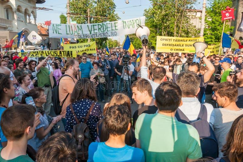 Manifesto against abusive deforestation stock photo