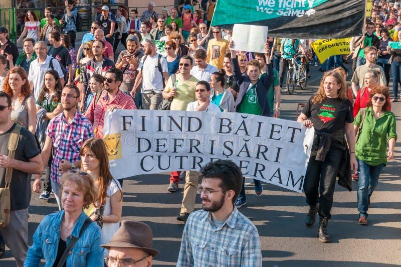 Manifesto against abusive deforestation stock images