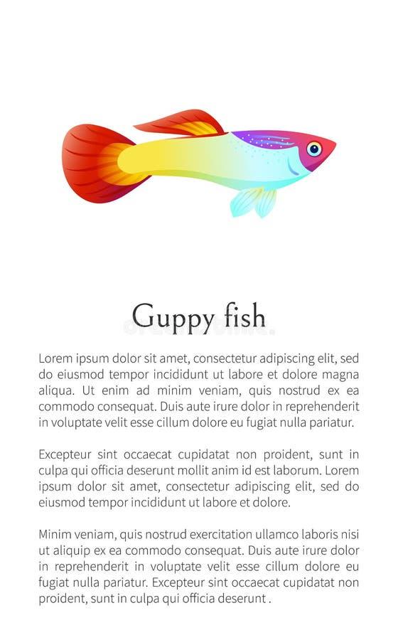 Manifesto del pesce del Guppy dell'acquario con il marinaio del campione del testo illustrazione vettoriale