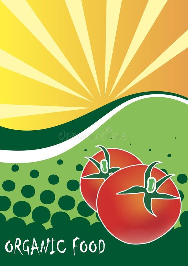 Manifesto dell'alimento biologico illustrazione di stock