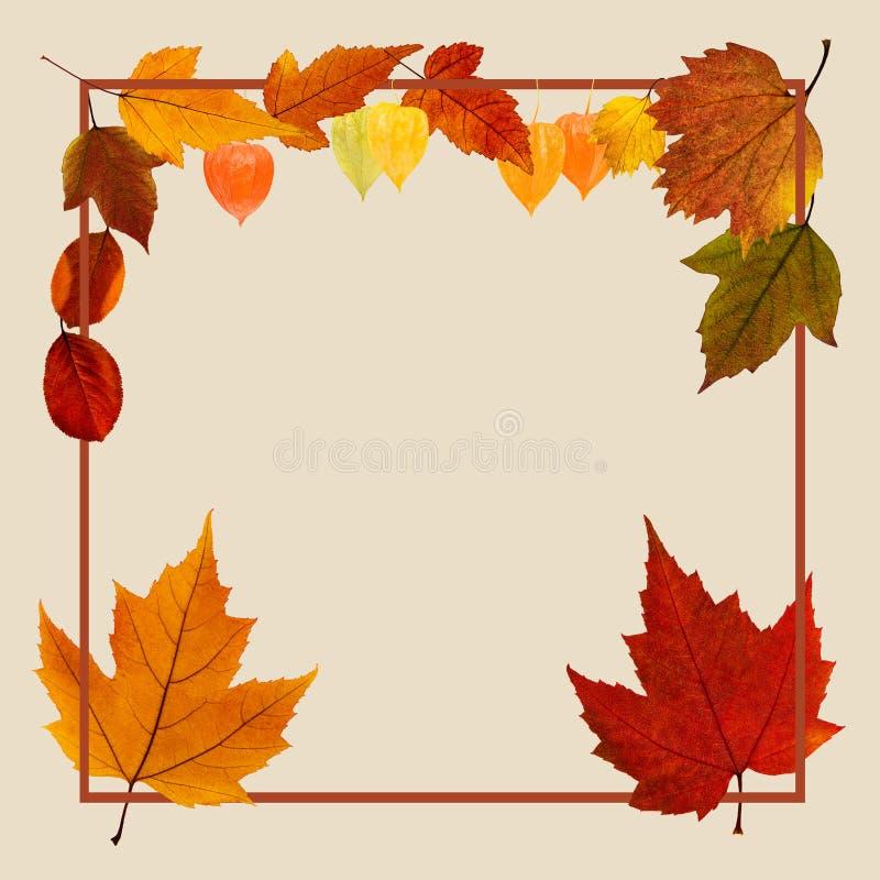 Manifesto di autunno con le foglie di caduta immagine stock