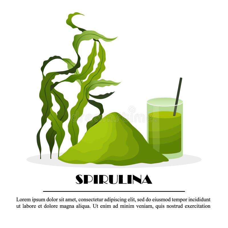Manifesto di Spirulina con le alghe del frullato della polvere delle alghe isolate su fondo bianco, illustrazione di vettore Alim fotografia stock