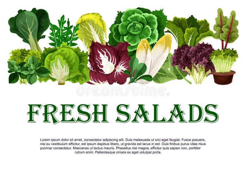 Manifesto di vettore degli ortaggi freschi delle insalate fresche illustrazione vettoriale