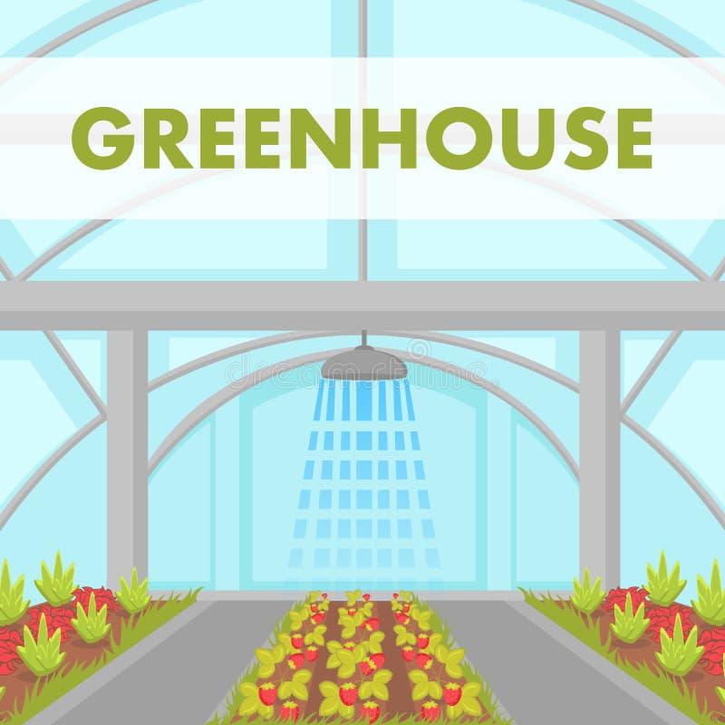 Manifesto di vettore dell'impianto di irrigazione della Camera di coltivazione royalty illustrazione gratis