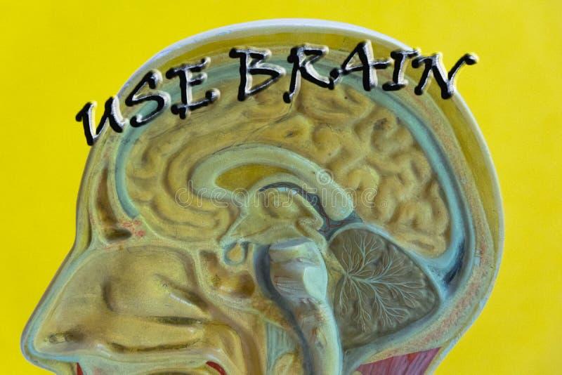Manifesto motivazionale di citazione del cervello immagini stock libere da diritti