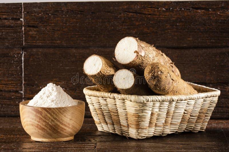 Manihot esculenta - amidon de manioc cru L'espace des textes photographie stock libre de droits