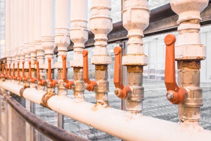 Manijas de la naranja en los tubos blancos fotografía de archivo libre de regalías