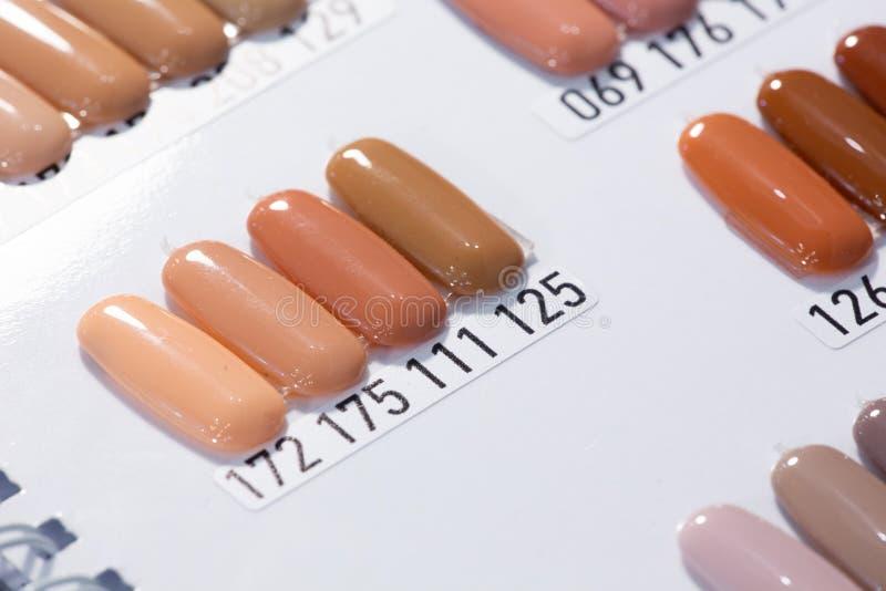 Manikürefarbpflückersatz Proben von Nagellacken schließen oben Sammlung helle Farbnagellackproben Kann als a verwendet werden stockfoto