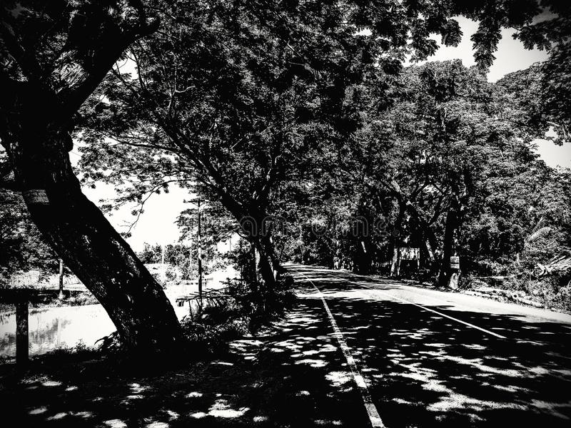 Manikganj, Bangladesh: Licht & schaduw royalty-vrije stock foto's