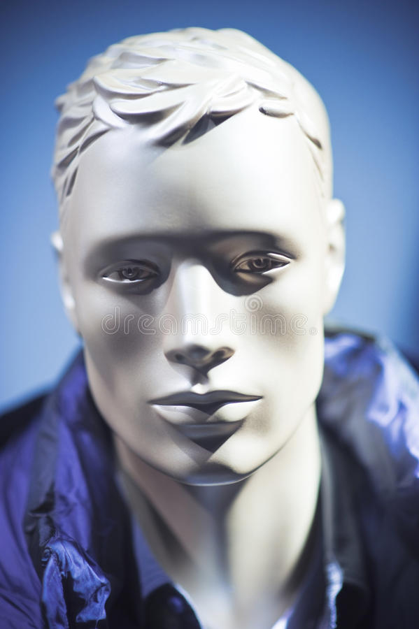 Download Manikin head stock photo. Image of figure, silver, silvery - 16203052