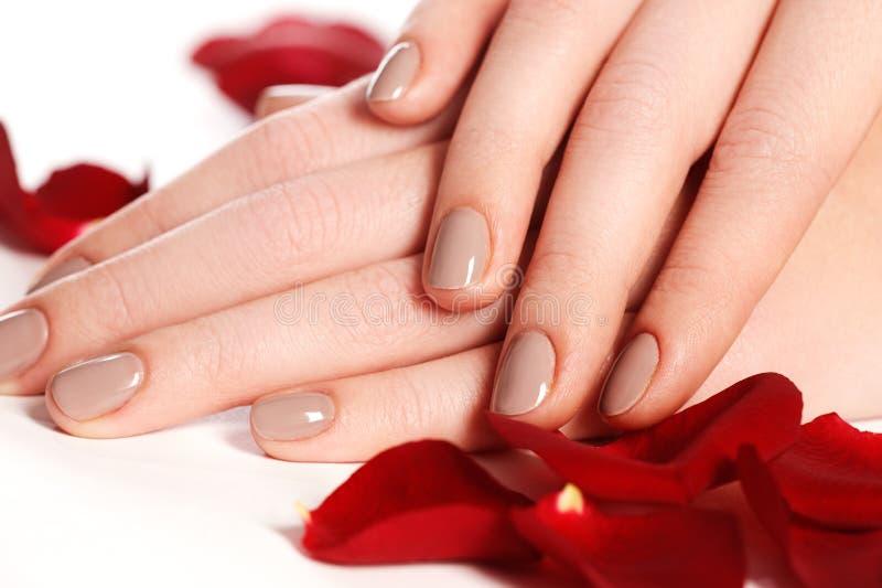 Manikyr, händer & brunnsort Härliga kvinnahänder, mjuk hud, beautif arkivbilder