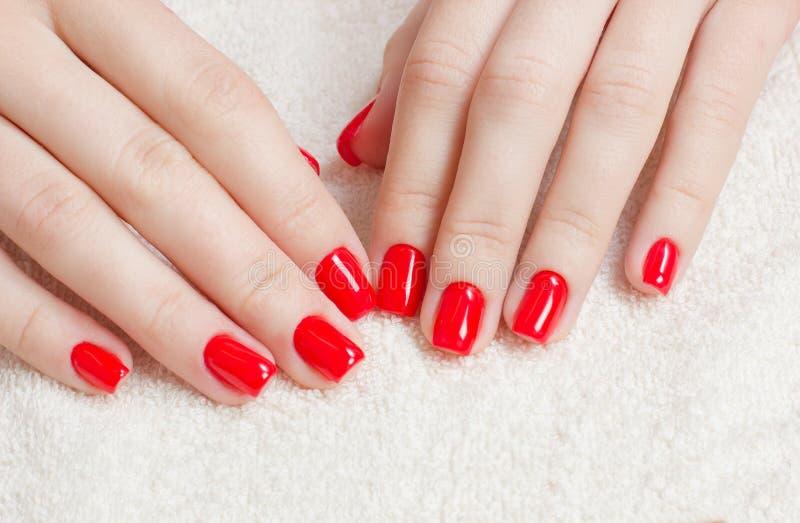 Manikyr - skönhetbehandlingfotoet av trevliga manicured kvinnafingernaglar med rött spikar polermedel arkivbild