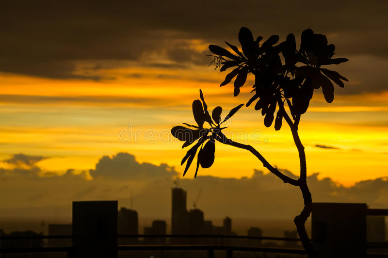 Manila Sunset Silhouette stock photography